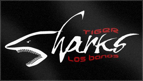 Tiger Shark Logo Tagged Keywords Tiger Sharks