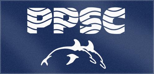 Custom Woven Swim Club Towels for the Portland Porpoise