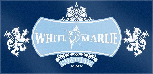 Custom Woven Logo Beach Towel for White Marlie